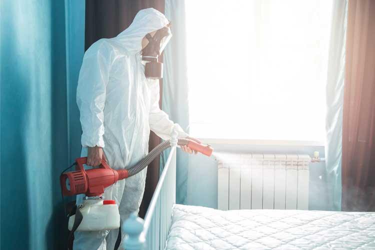 Bacterial-Fogging-Hotel
